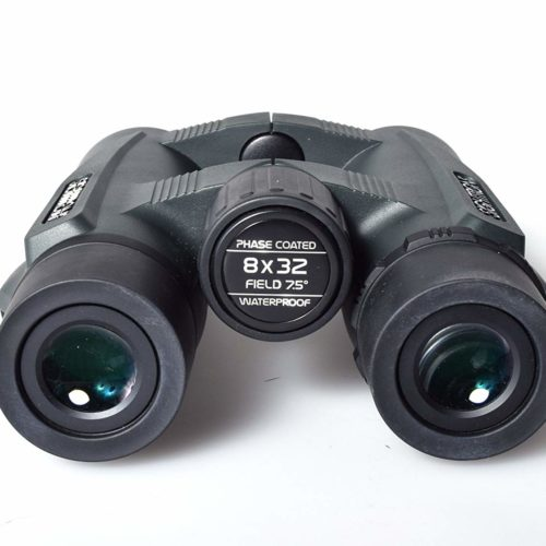 SIB23-0089